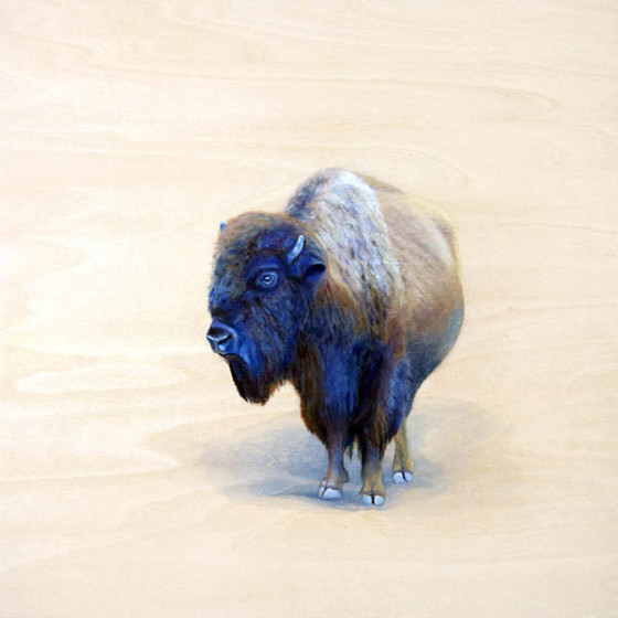painting of solitary bison by Shelby Prindaville, acrylic on wood