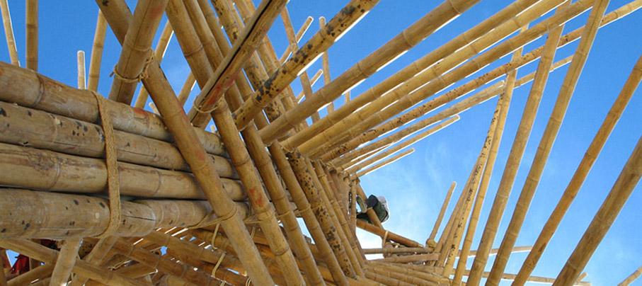 Bamboo construction beams