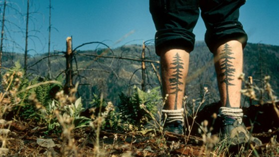 Standing in clear cut forest with tattoo of pine tree