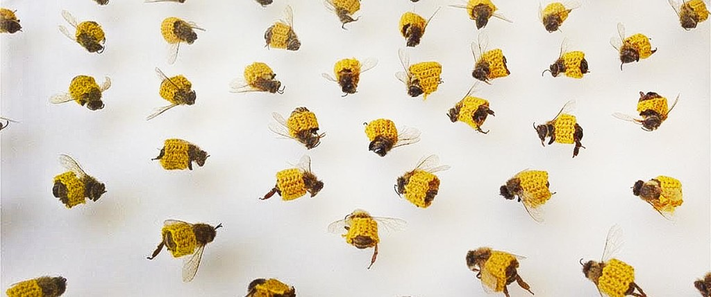 Bees with crocheted bandages