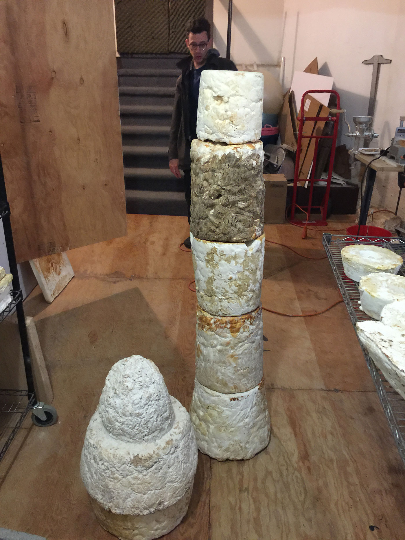 column constructed from mycelium