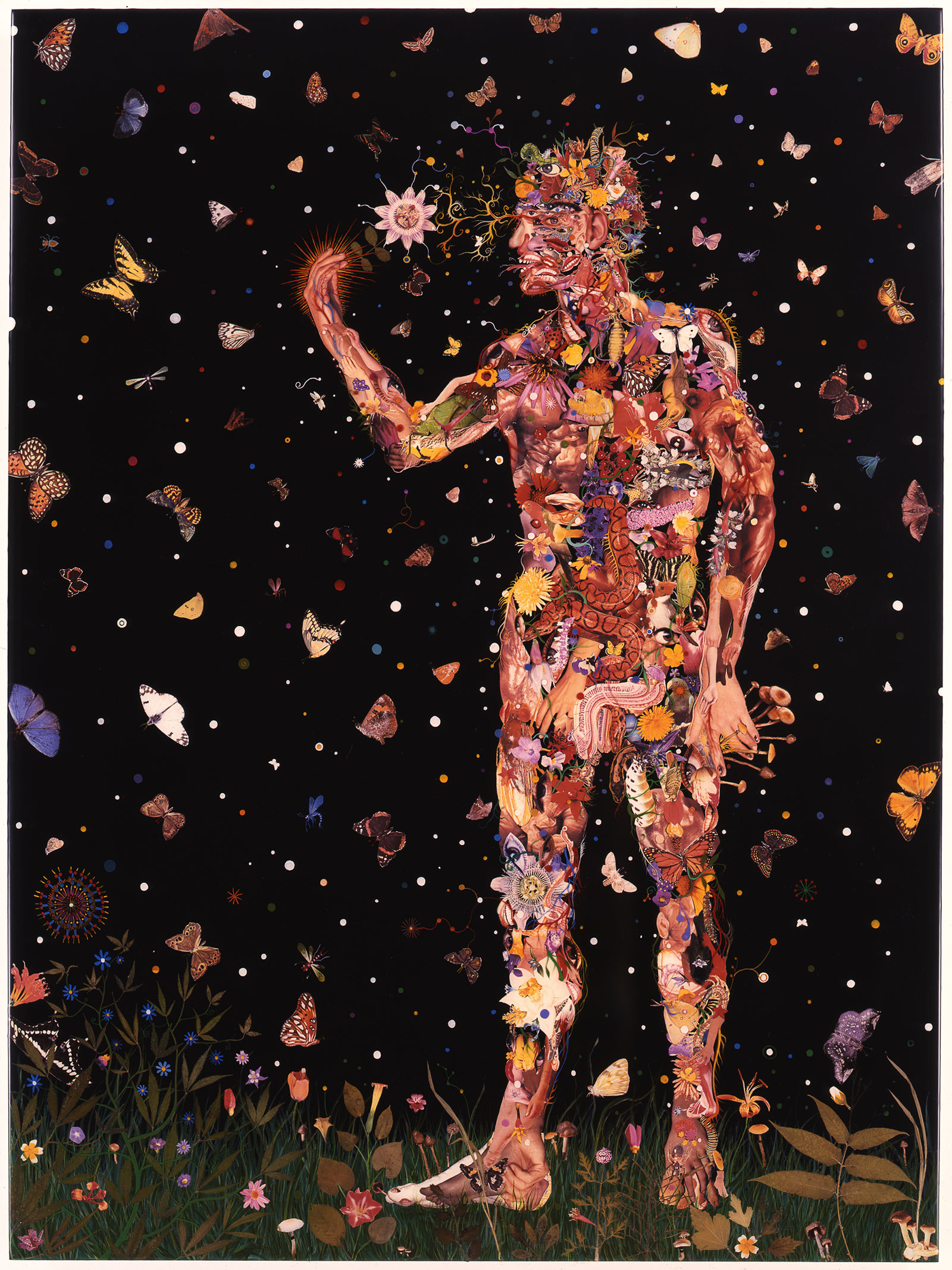 man holding flower and surrounded by butterflies