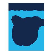 NRDC polar bear logo