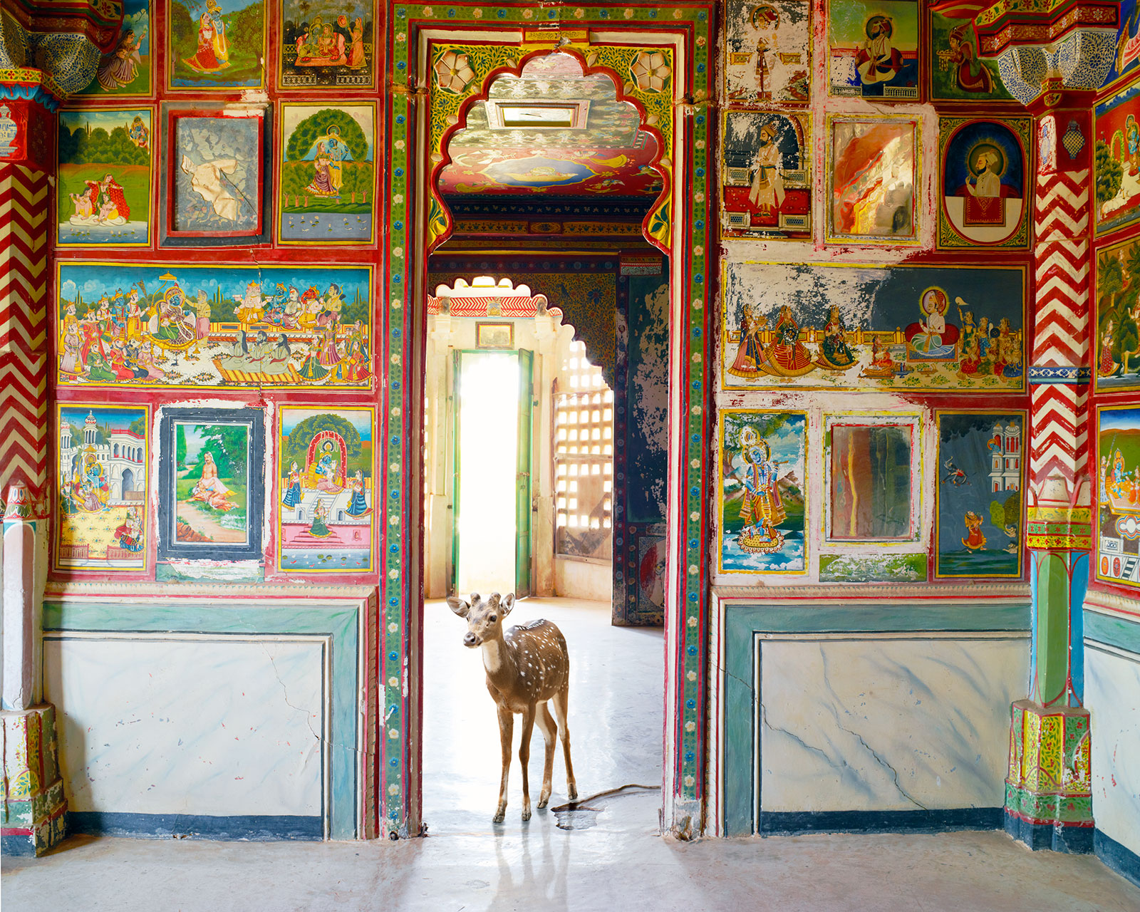 fawn in ornate Indian temple